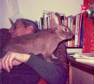 My first rabbit, Thumper sitting on my dad
