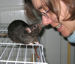 Lindsay and her rat, Cookie